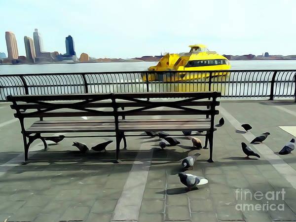 Park Bench Digital Art - New York City Pigeons #2 by Ed Weidman
