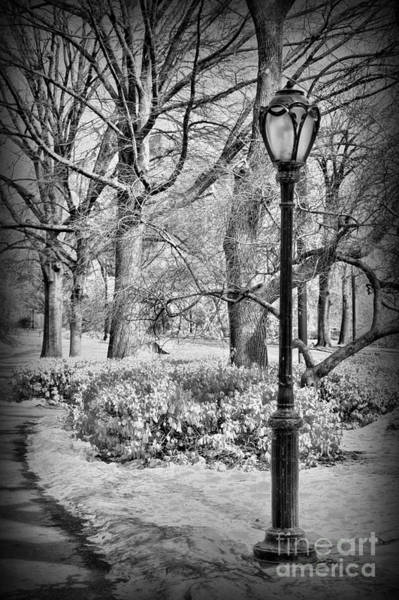 Wall Art - Photograph - New York City - Winter - Central Park by Paul Ward