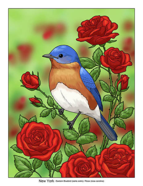 Eastern Bluebird Painting -  New York State Bluebird And Rose by Crista Forest