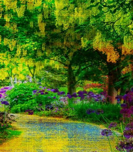 Photograph - New Zealand Walk by Digital Art Cafe
