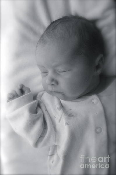 Wall Art - Photograph - Newborn by Aneta  Berghane