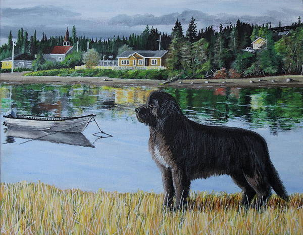 Painting - Newfoundland In Labrador by Thom Barker
