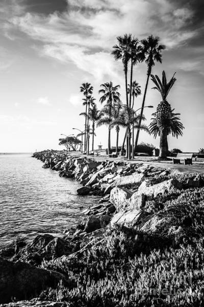 Balboa Photograph - Newport Beach Jetty Black And White Picture by Paul Velgos