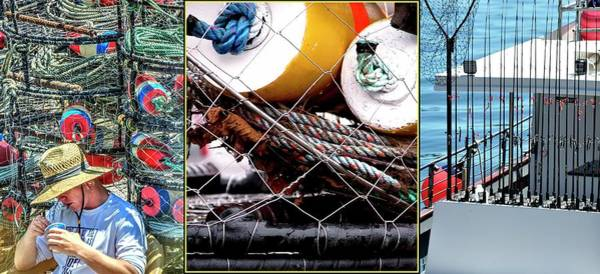 Photograph - Newport Fishing Collage by Jerry Sodorff