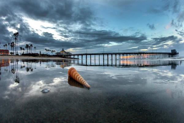 Wall Art - Photograph - Newport Pier Seashell by Sean Davey