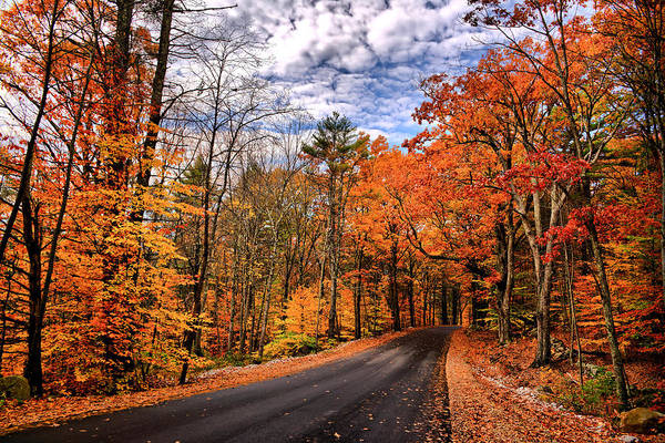 Nh Photograph - Nh Autumn Road 4 by Edward Myers
