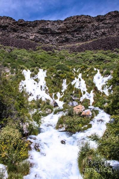 Photograph - Niagra Springs Idaho Landscapes By Kaylyn Franks by Omaste Witkowski