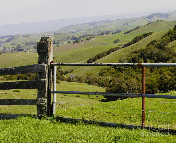 Photograph - Nicasio Overlook by Joyce Creswell