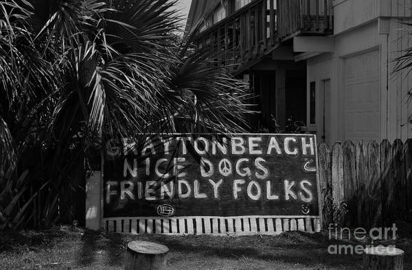 Grayton Beach Photograph - Nice Dogs - Friendly Folks by Sidney Spires-Mangum