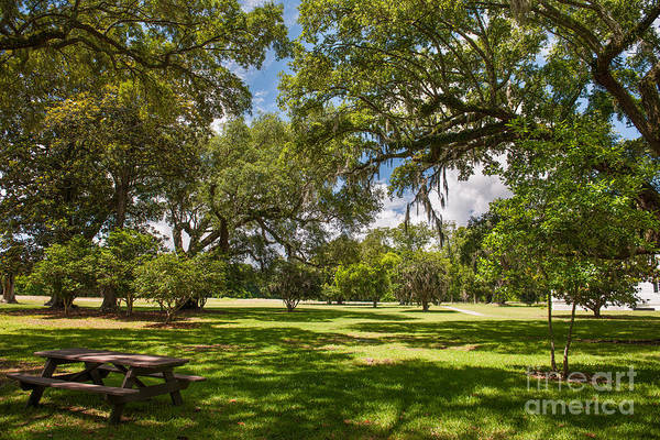 Photograph - Nice Spot For Lunch by Dale Powell