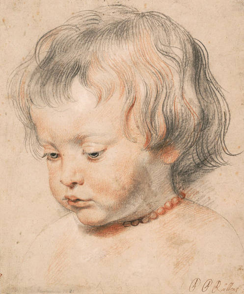 Drawing - Nicolaas Rubens Wearing A Coral Neckless by Peter Paul Rubens