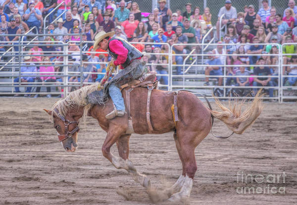 Bucking Bronco Digital Art - Night At The Rodeo by Randy Steele