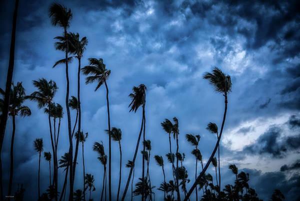 Photograph - Night Beach by Ross Henton