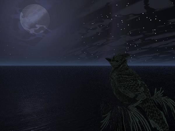 Digital Art - Night Bird by Darren Cannell