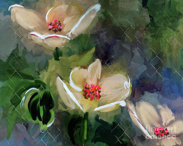 Digital Art - Night Blooming Dogwood by Lois Bryan