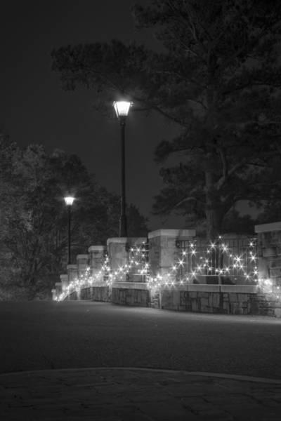 Night Bridge In December Art Print