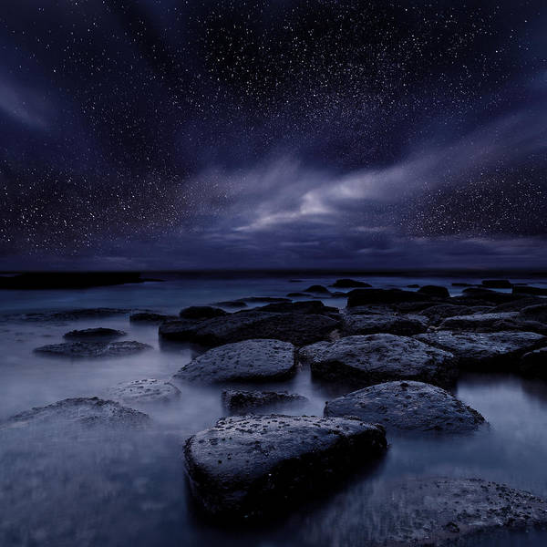 Photograph - Night Enigma by Jorge Maia