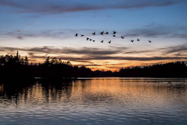 Horicon Wall Art - Photograph - Night Flight At Lake Horicon Nj  by Terry DeLuco