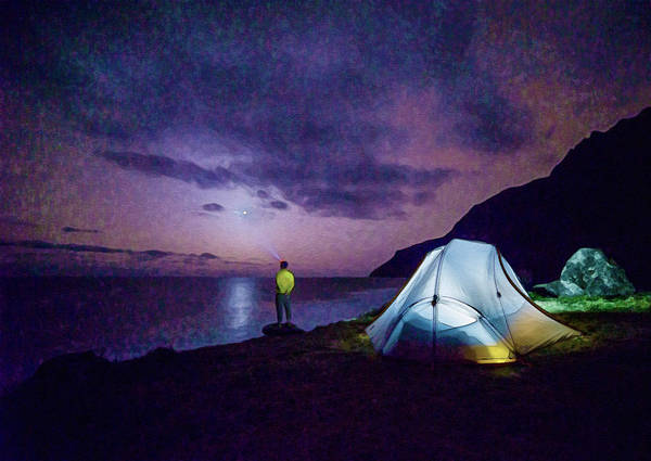 Photograph - Night Gazer by Artistic Panda