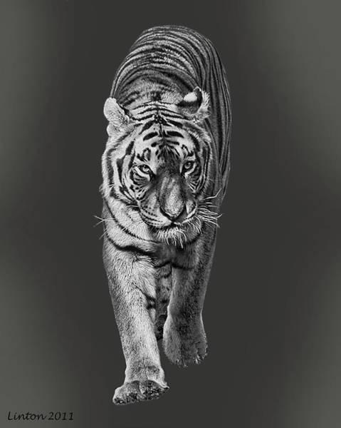 Digital Art - Night Hunter by Larry Linton