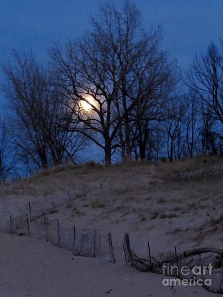 Photograph - Night Light by Pamela Clements