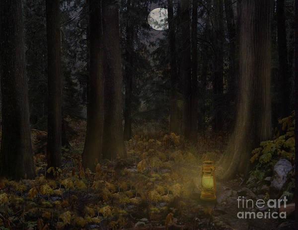Photograph - Night Lights by Vivian Martin