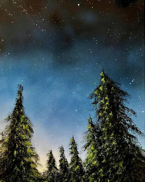 Wall Art - Painting - Night Lit Evergreens by Willy Proctor
