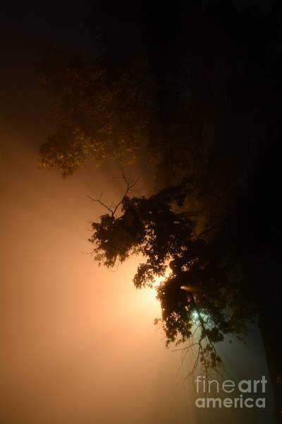 Photograph - Night Mist by Charles Owens