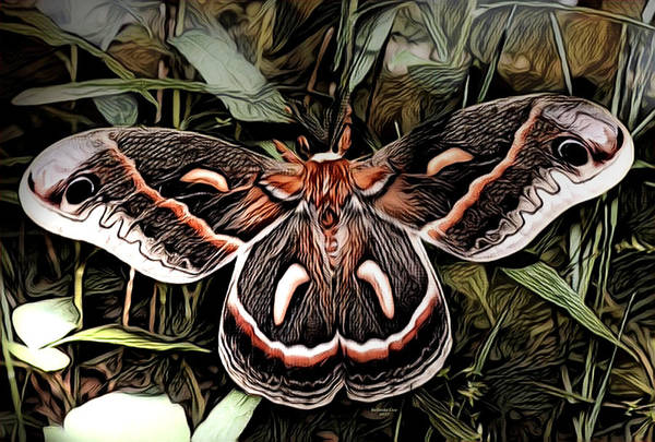 Digital Art - Night Moth by Artful Oasis