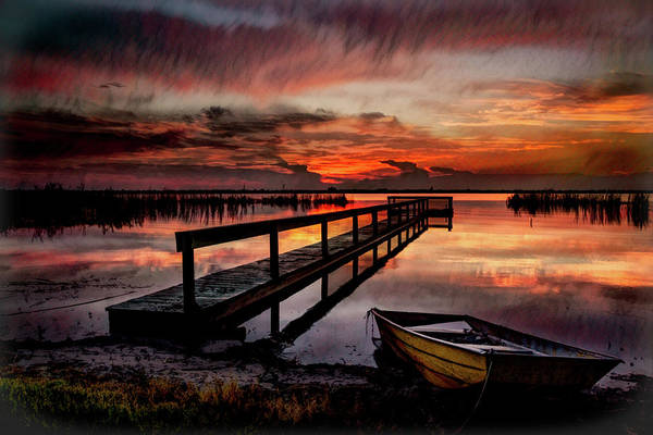 Photograph - Night Moves by Debra and Dave Vanderlaan