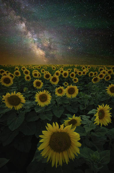 Wall Art - Photograph - Night Of A Billion Suns by Aaron J Groen