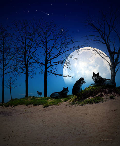 Timber Wolves Digital Art - Night Of The Wolves by Brian Wallace