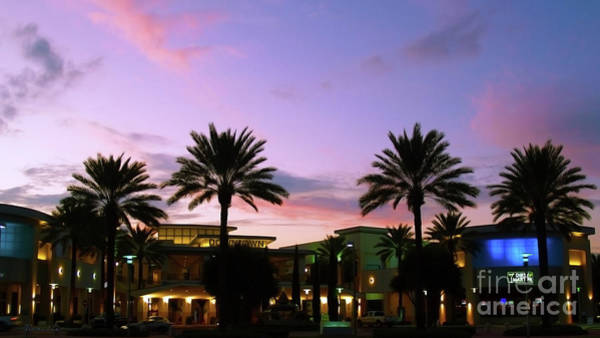 Photograph - Night On The Town Palm Beach Florida Photo 515 by Ricardos Creations