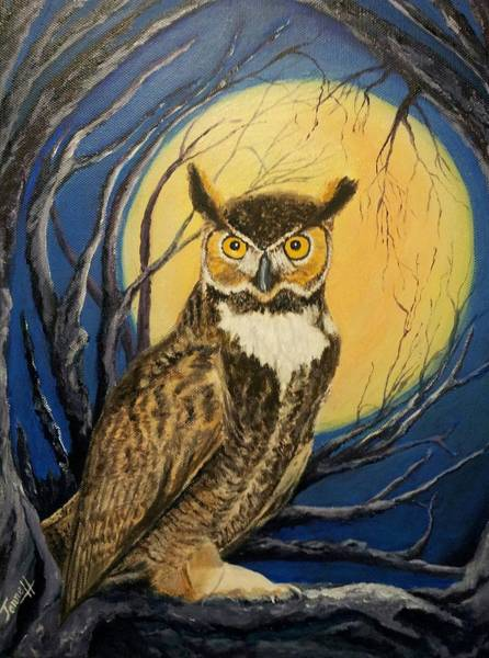 Wall Art - Painting - Night Owl by Janne Henn