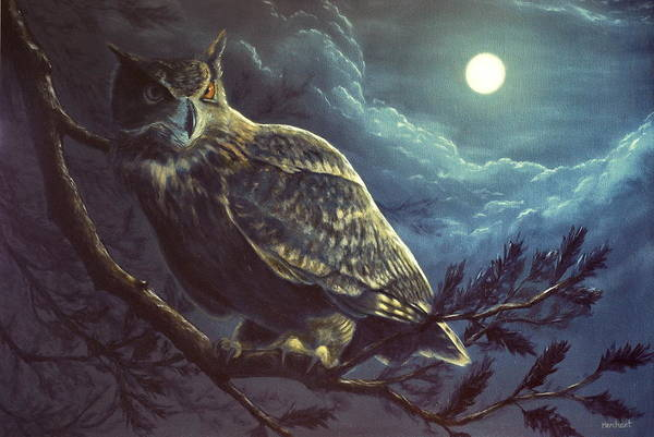 Painting - Night Owl by Linda Merchant