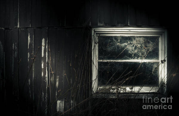 Spiderweb Photograph - Night Photo Of An Eerie Grunge Window In Moonlight by Jorgo Photography - Wall Art Gallery