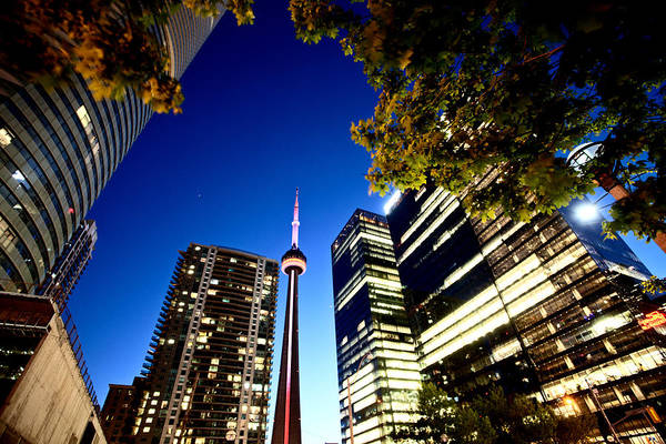 Wall Art - Photograph - Night Photo Toronto City by Mark Duffy