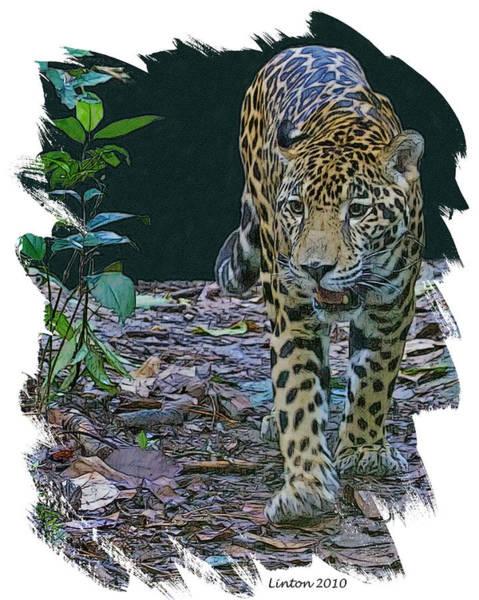 Belize Digital Art - Night Prowler by Larry Linton