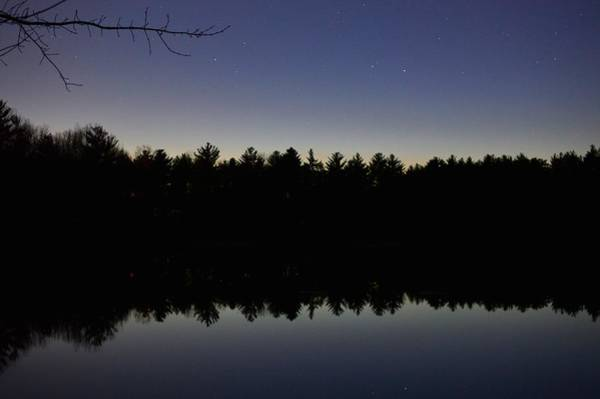 Photograph - Night Reflects On The Pond by Chris Alberding