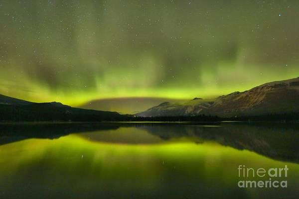 Photograph - Night Sky Delight by Adam Jewell