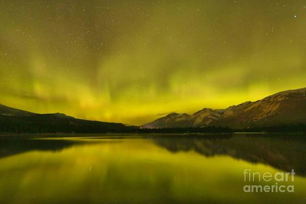 Photograph - Night Sky Zen by Adam Jewell