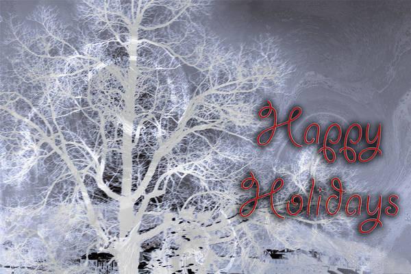 Photograph - Night Vision I Happy Holidays Card 3 by Lesa Fine