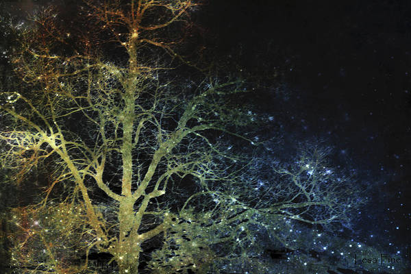Mixed Media - Night Vision I Lightning Bugs by Lesa Fine