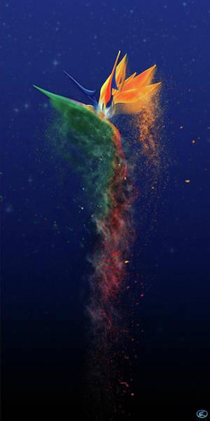 Digital Art - Nightbird by Kenneth Armand Johnson