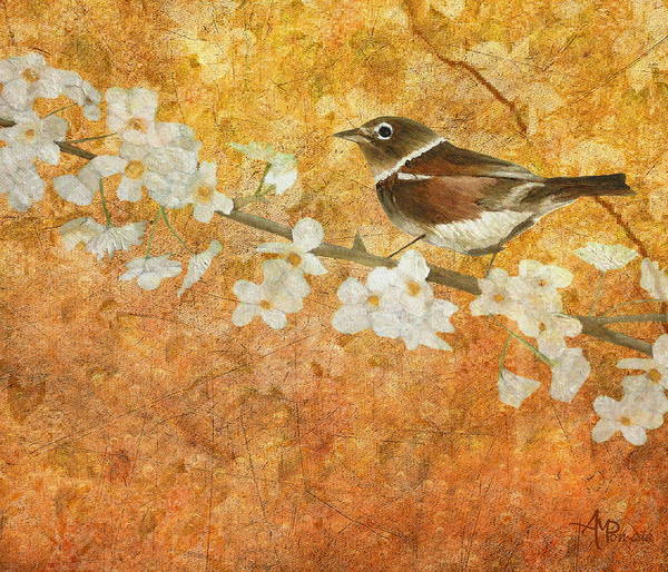 Photograph - Nightingale's Solstice by Angeles M Pomata