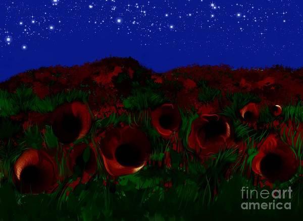 Wild Poppies Digital Art - Nignt Field Of Ppoppies by Halyna Kavun