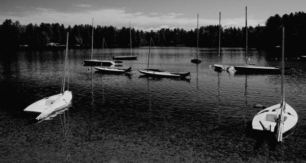 Photograph - Nine Sailboats At Camp Russell by David Patterson