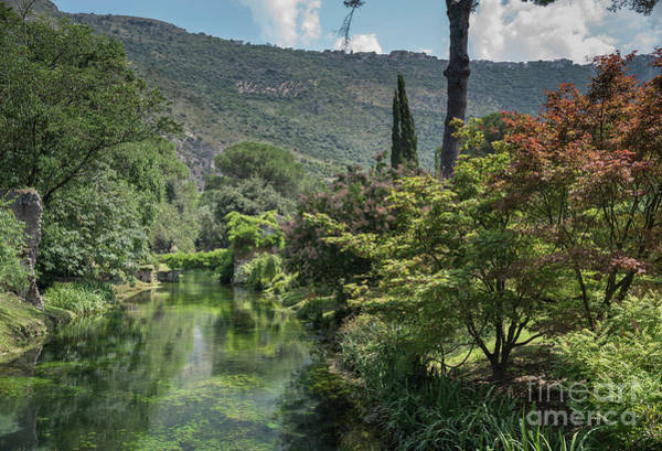 Photograph - Ninfa Garden, Rome Italy 5 by Perry Rodriguez