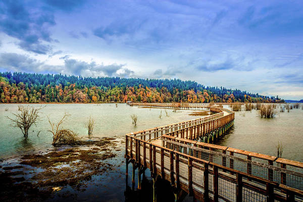 Photograph - Nisqually Refuge Wetlands Boardwalk  by Barry Jones