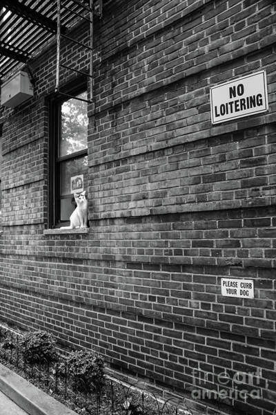 Photograph - No Loitering by Cole Thompson